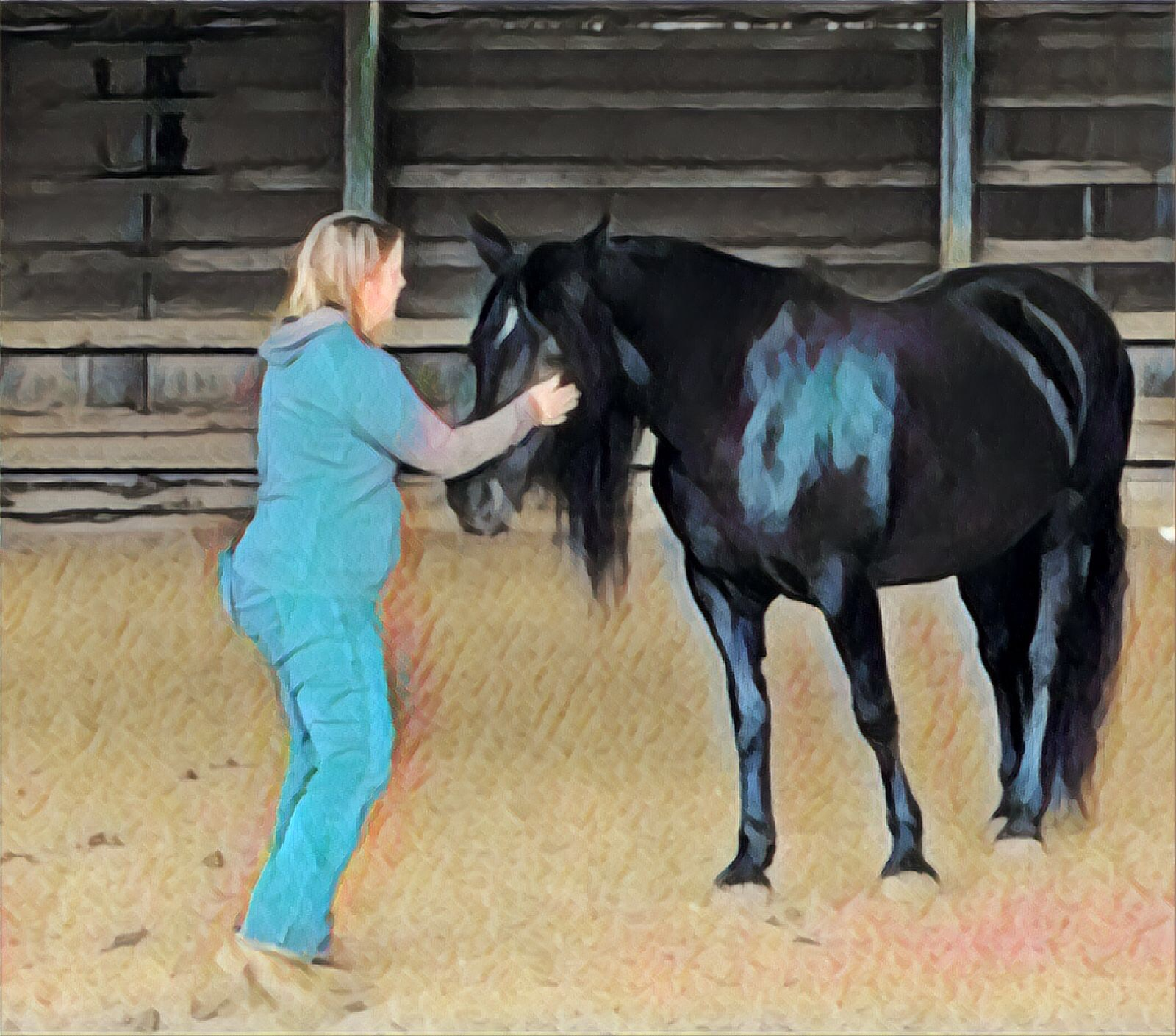 Connection with a horse is about being vulnerable
